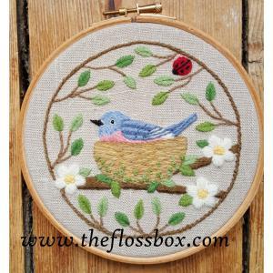 Nesting Blubird